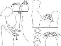 Техники бесконтактного массажа